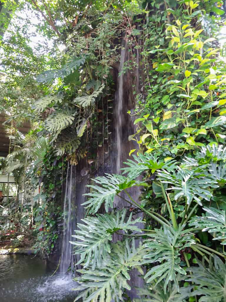 Waterfalls inside the Langkawi Bird Paradise